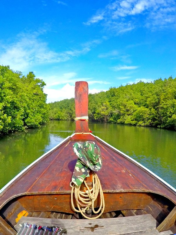 Boat in the mangroves