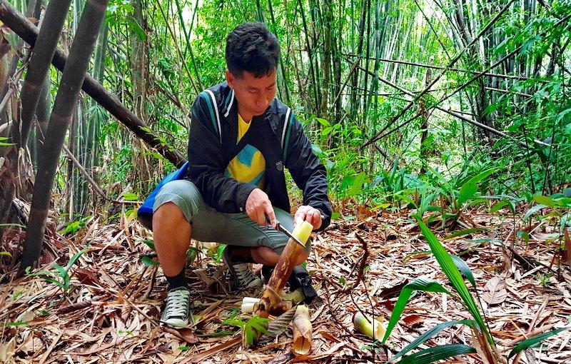 Guided Jungle Tour near Khao Lak
