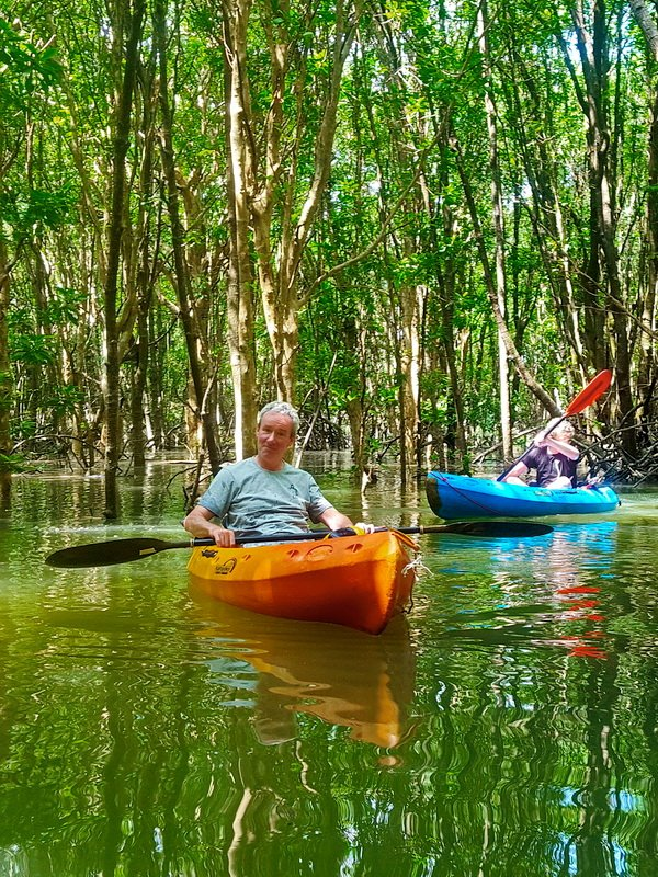 Mangrove Kayaking Tour Khao Lak